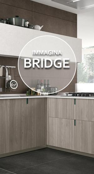 immagina-bridge